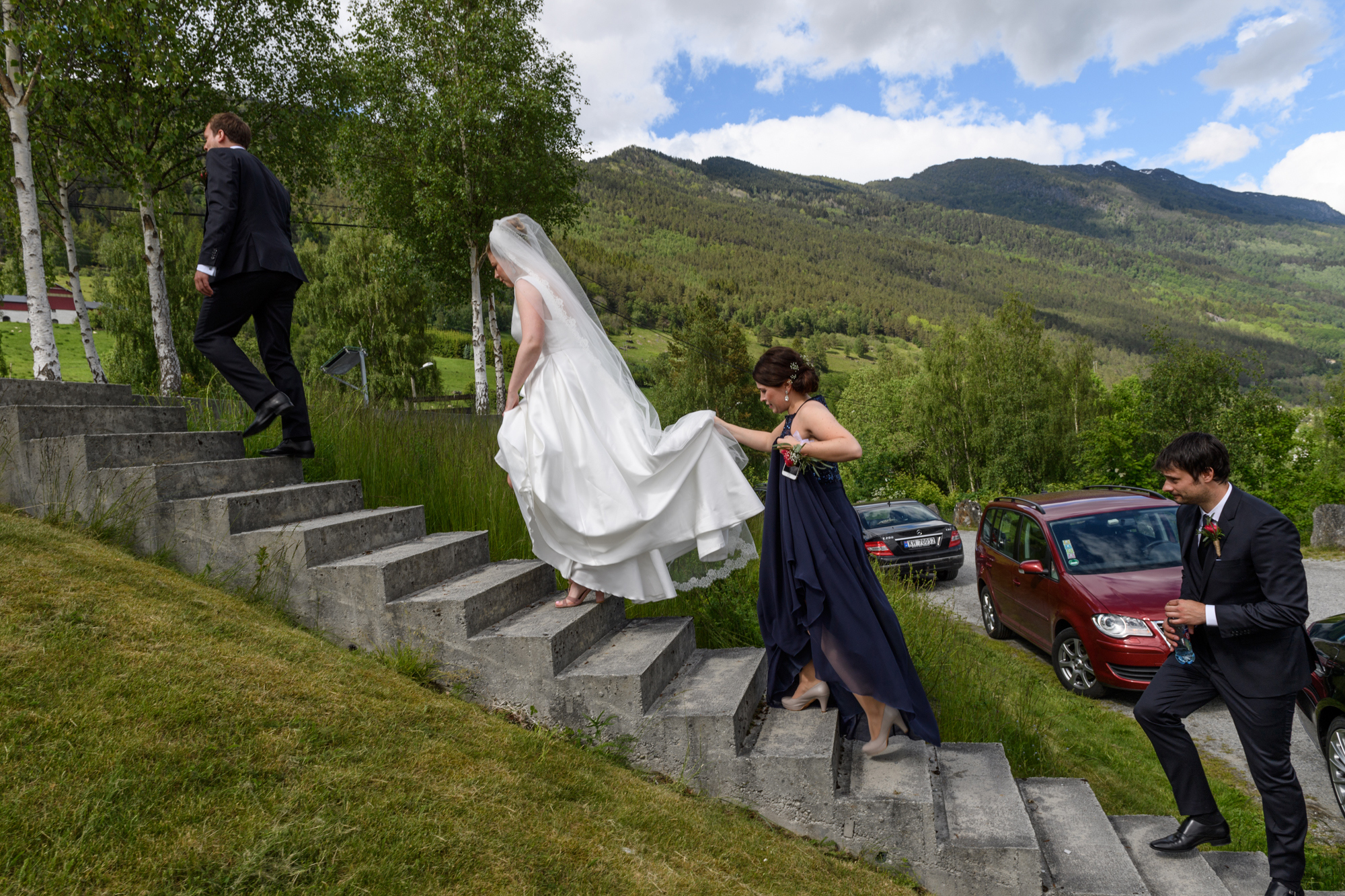 Norwegian wedding party